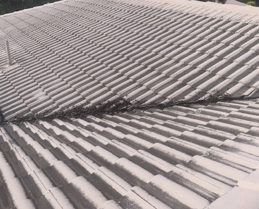 Tiled Roof Cleaning - Recommended Home Services
